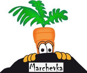 marchevkai