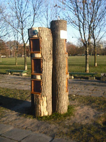 biblioteka plenerowa park szymanskiego