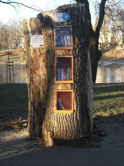 biblioteka plenerowa prak moczydlo