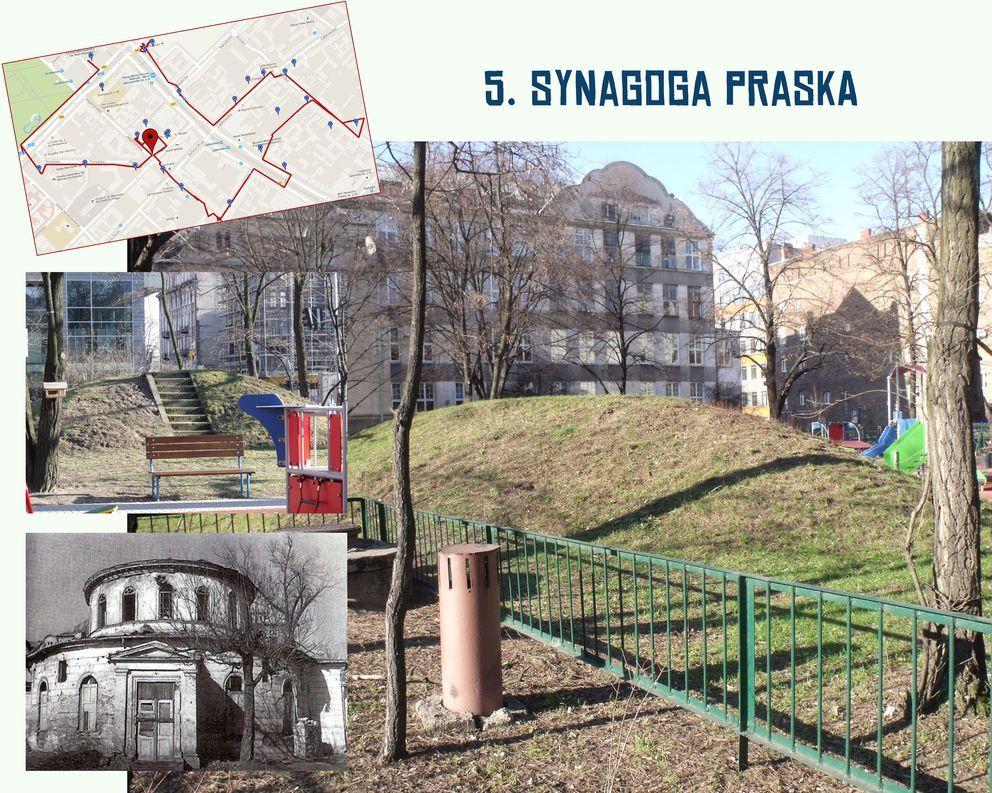 5_synagoga praska