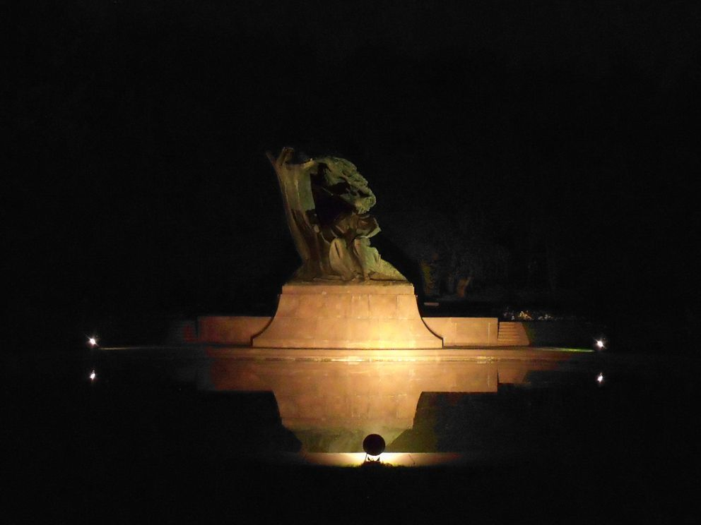 lazienki krolewskie noca2