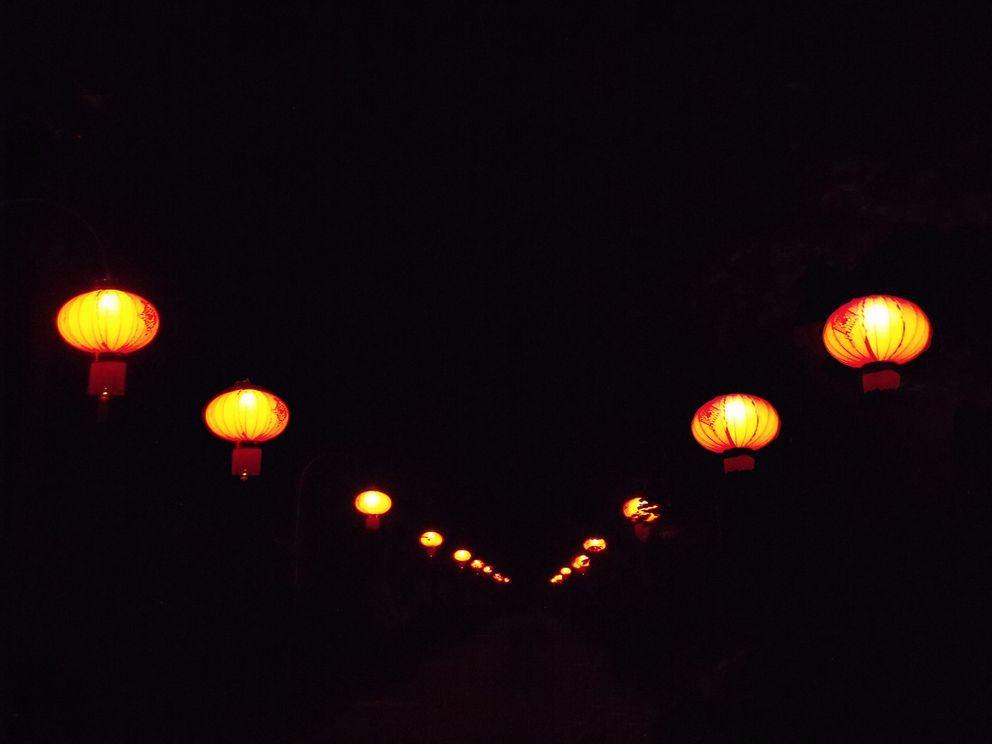 lazienki krolewskie noca5