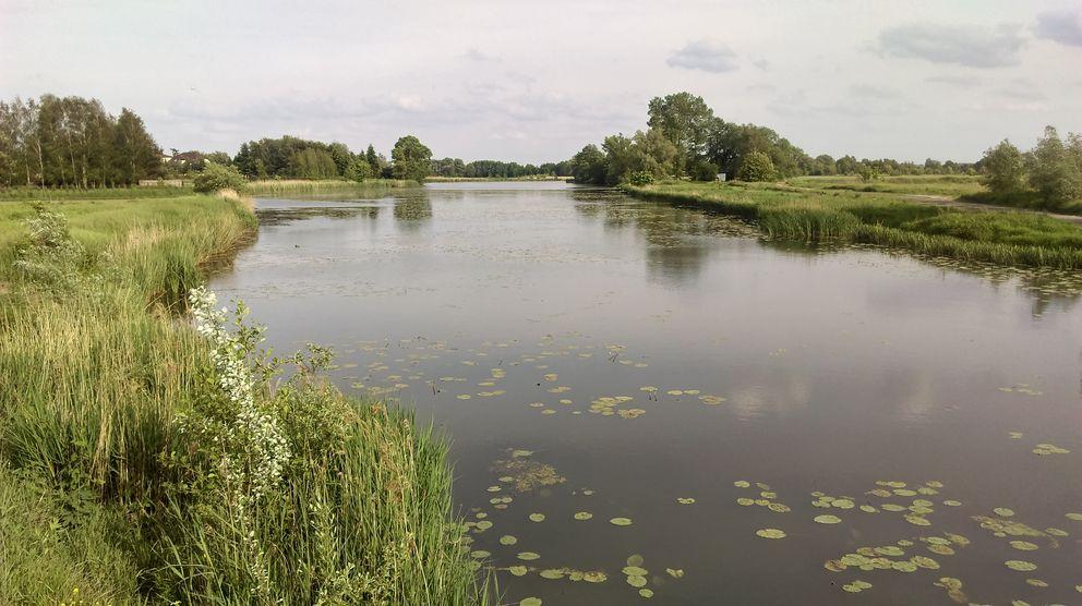 Jezioro Lisowskie